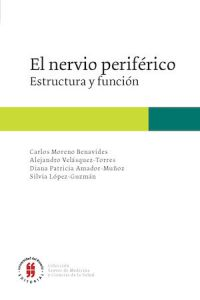 Structure And Function Of The Peripheral Nerve Latin