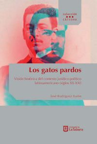 LOS GATOS PARDOS: VISIÓN HISTÓRICA DEL CONTEXTO JURÍDICO–POLÍTICO LATINOAMERICANO (SIGLO XX–XXI)